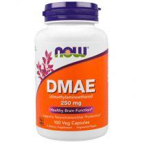dmae 250 mg now